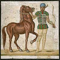 Charioteer of the Greens (Ancient Rome)