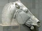 Parthenon Horse